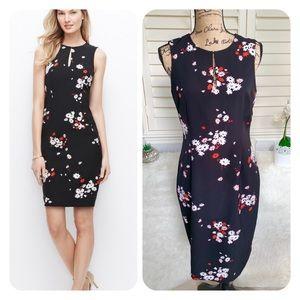 Ann Taylor floral keyhole sheath dress NWT